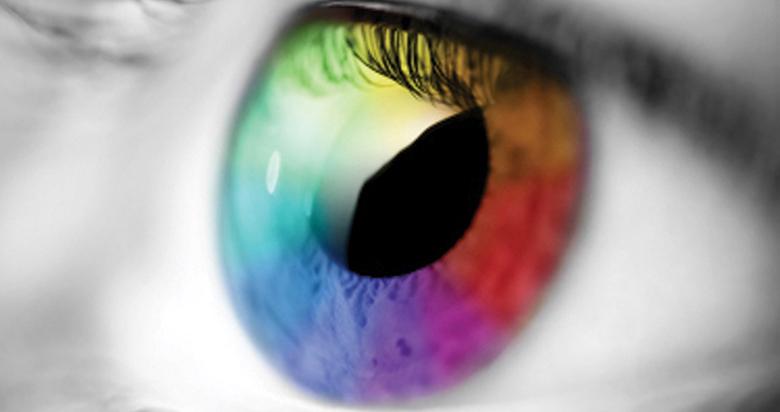 dieta oczu