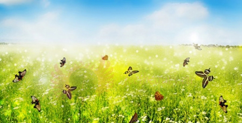 Rodzaje alergii i ich przyczyny